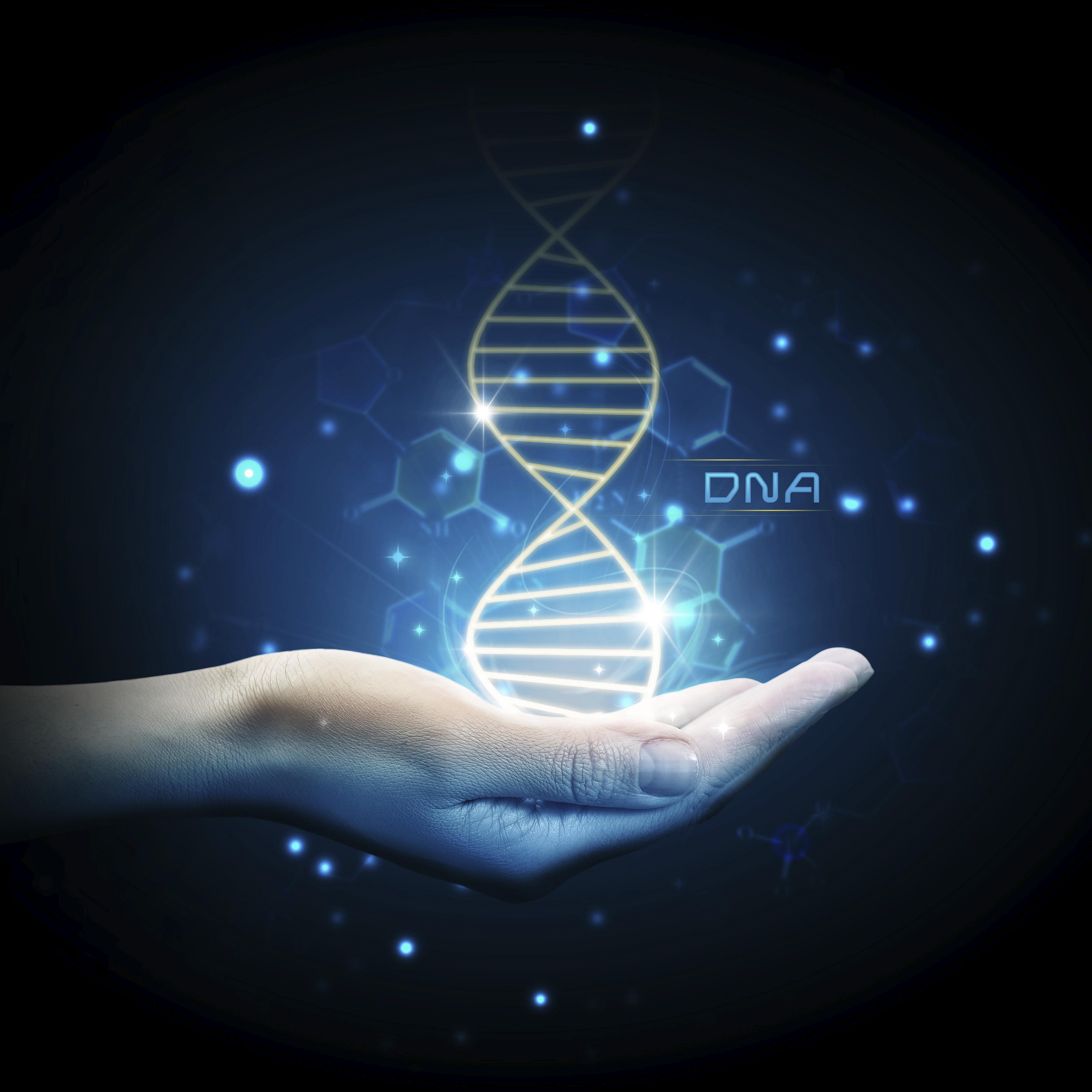 neuer genetischer test | permedio